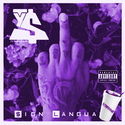Sign Language | Chopped x Screwed by DJYung$avage  by Ty Dolla $ign