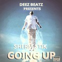 Going Up by Sherm Stik