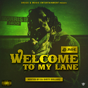 Welcome To My Lane by D. Roe