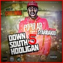 Down South Hooligan Vol.5  by CHILL iGRIND WILL