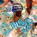 Blow'd Up Vol.10 Hosted by @Marleyworld (Blue Flame Edition)  by DJ Mystik