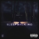 Sleep Walking by Grizzy James